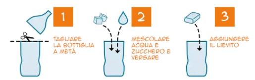 trappola zanzare bottiglia