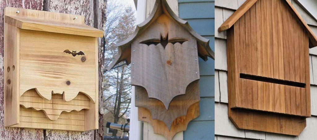 Bat box per pipistrelli
